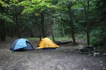 Click here for a copy of our rules and regulations & Western New York Camping - New York State Campground